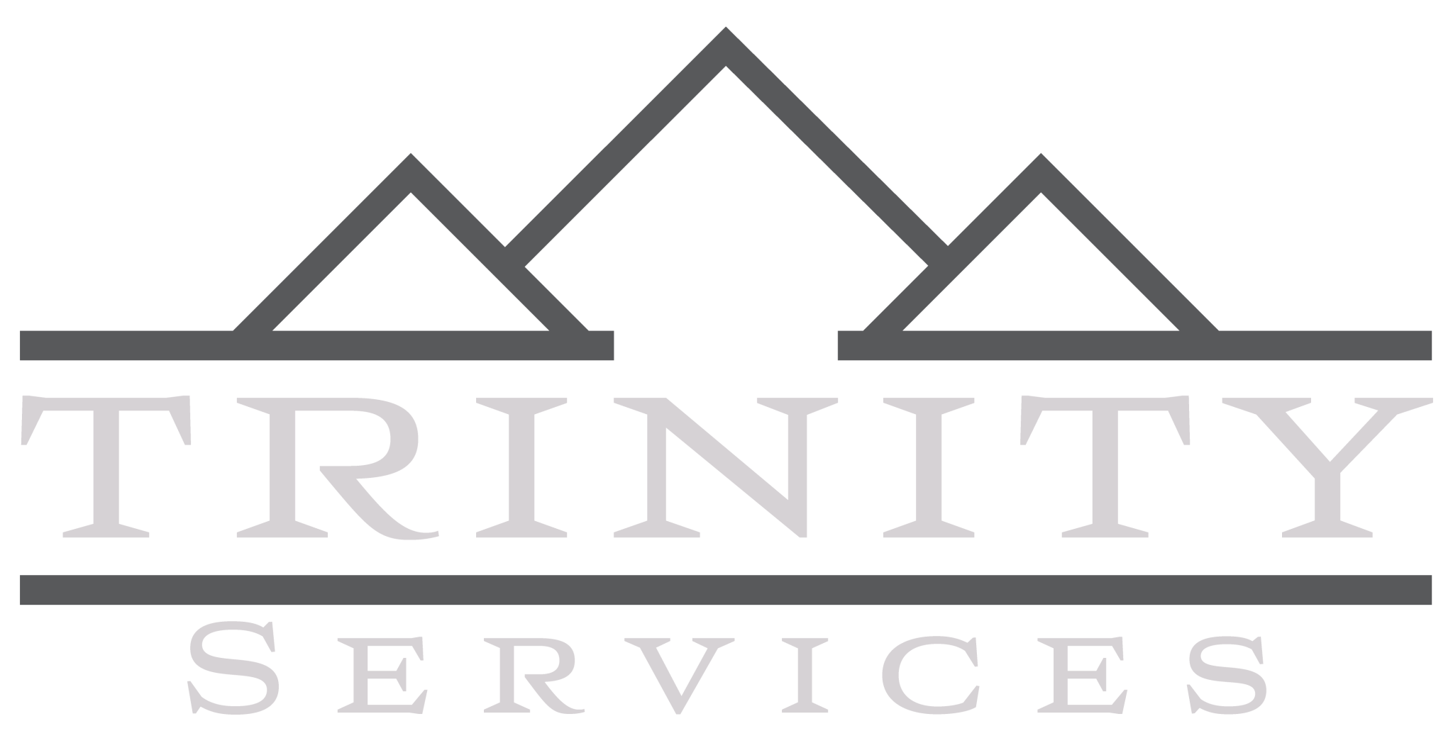 TRINITY_SERVICES_LIGHT